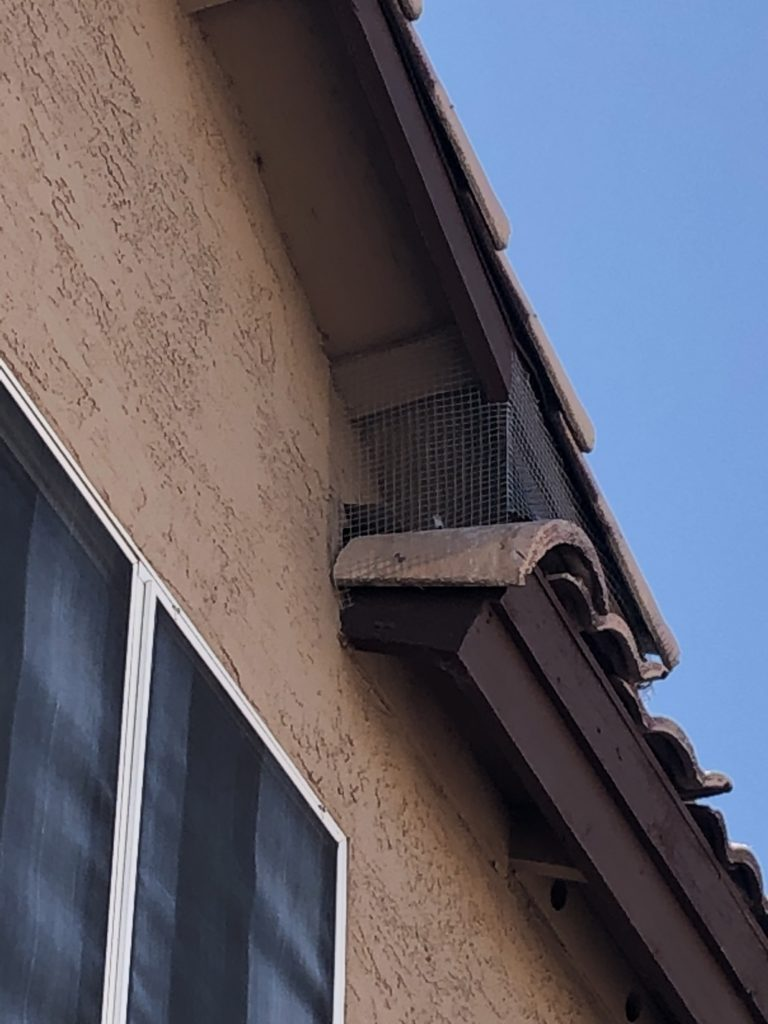 Pigeons are excluded from this nest area with screen