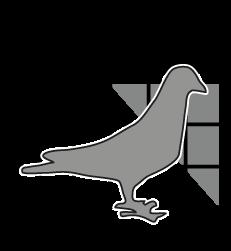 Pigeonpros logo